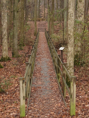 Swinging Bridge Nature Trail
